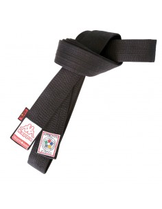 Black belt Kappa Athene approved IJF