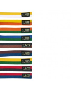 Belt in cotton Two-tone