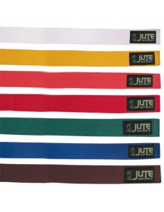 Colored belt on martial arts